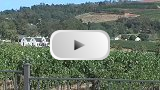 Stellenbosch Video Clip